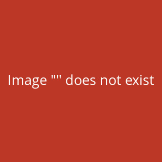 Standard Sleeves - PRO-Matte - Non Glare - 50 Sleeves (66 mm x 91 mm) (hell gelb)